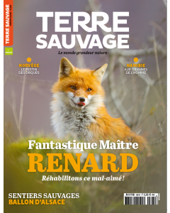 Terre Sauvage Octobre 2020